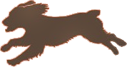 Operation Little Brown Dog Logo